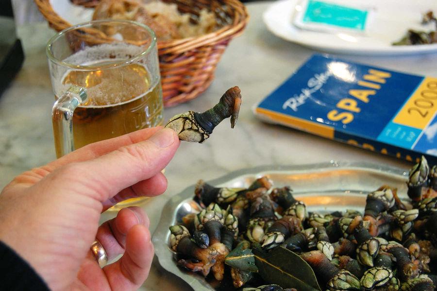 Barnacles and beer, Santiago de Compostela, Spain