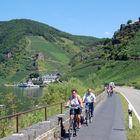 Bike Path, Beilstein, Mosel Valley, Germany