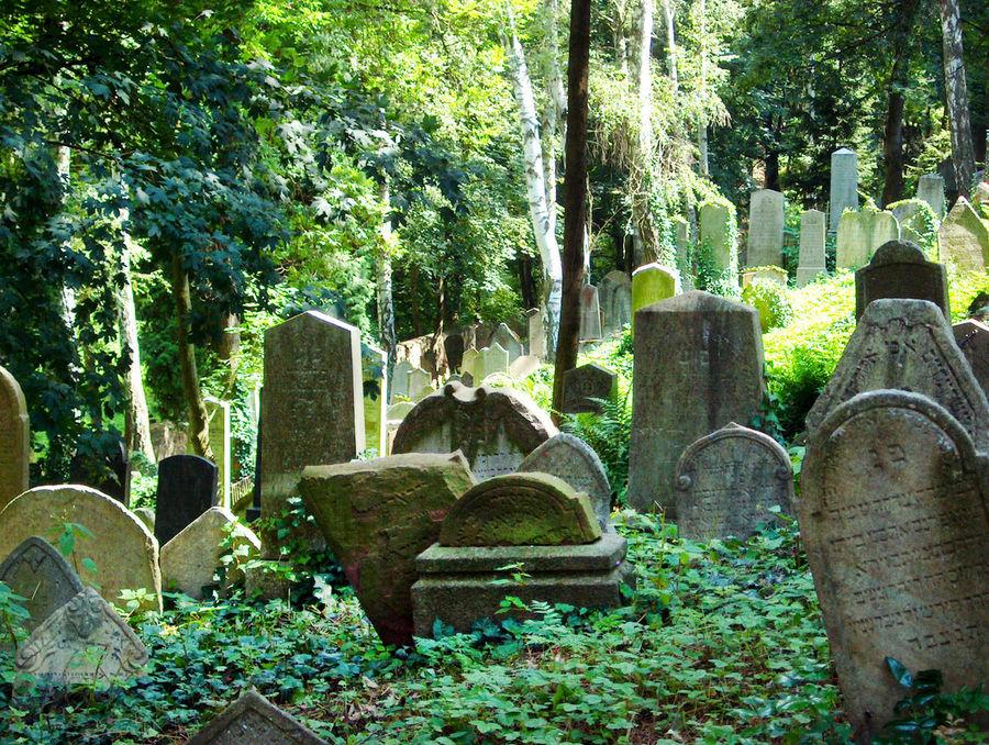 Jewish Cemetery, Třebíč, Czech Republic