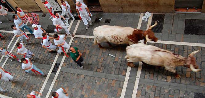Running of the Bulls (San Fermín), Pamplona, Spain