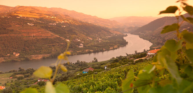 Sunset in Douro Valley, Portugal