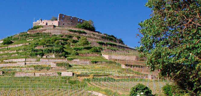 Castle ruins, Staufen, Germany