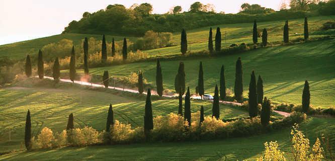 Rural hillside, Tuscany, Italy