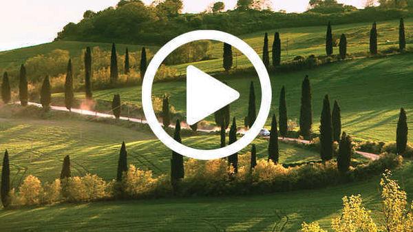 Traveler Full Movie In Italian Free Download Hd 720p