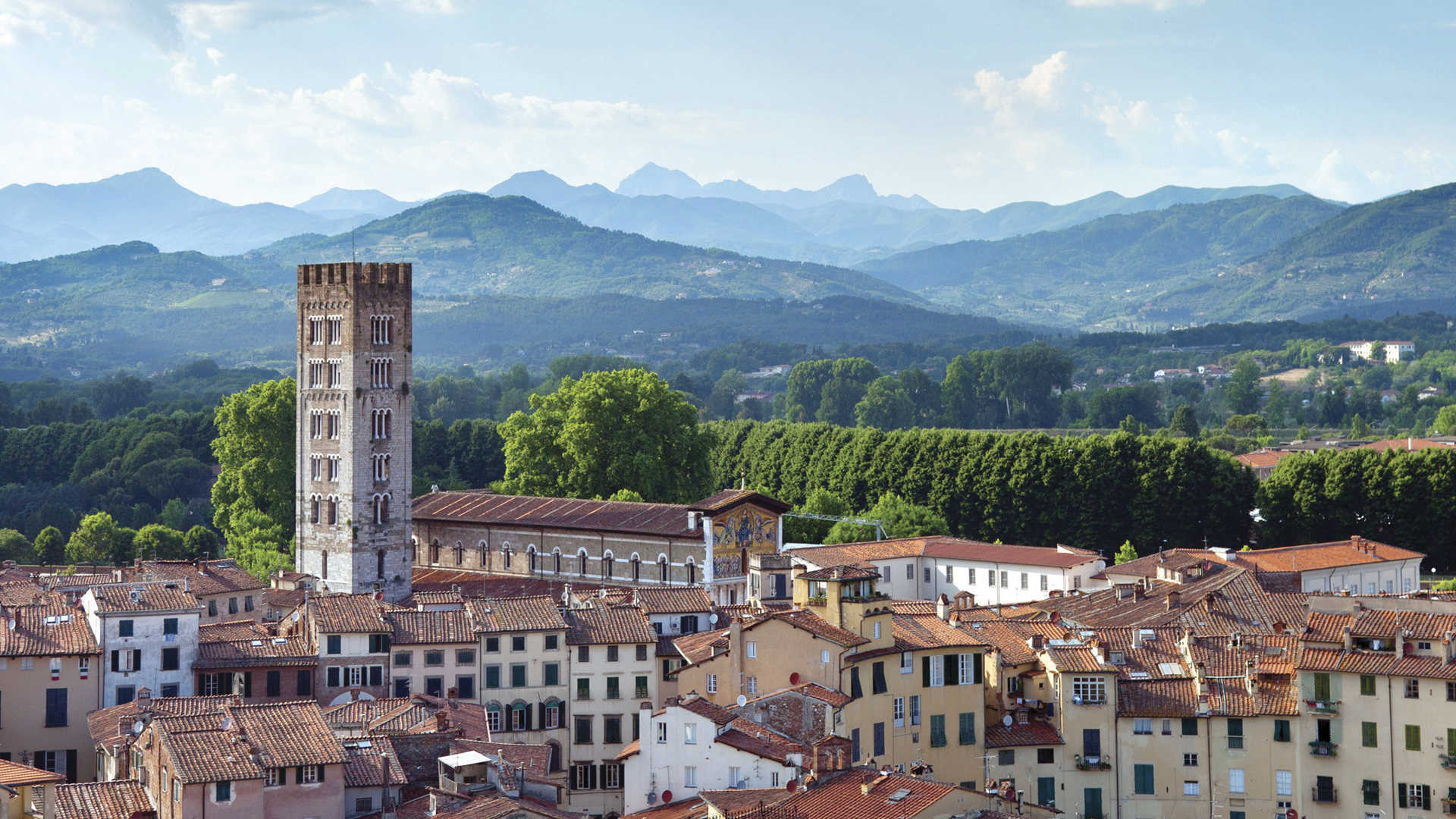 Lucca viewpoint