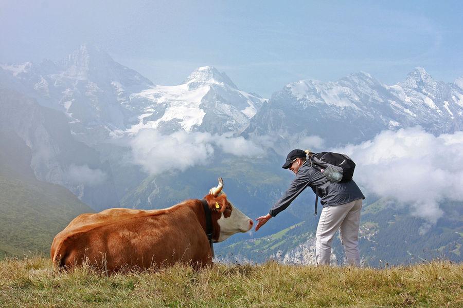 On the Männlichen–Kleine Scheidegg trail, Berner Oberland, Switzerland
