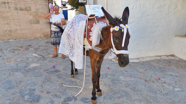 Wedding mule, Hydra, Greece