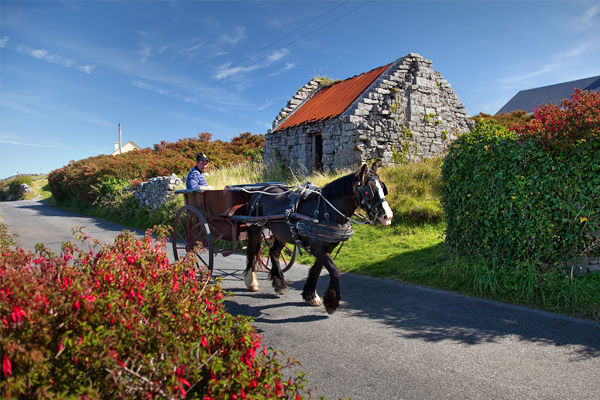 Horse-drawn cart, Inishmore, Aran Islands, Ireland