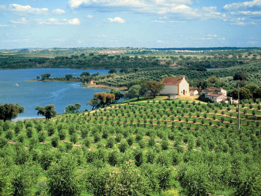 Alentejo farmland, Portugal