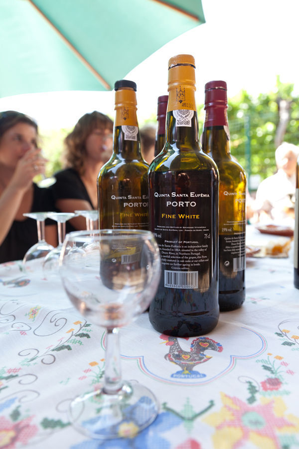 Port wine tasting, Douro Valley, Portugal