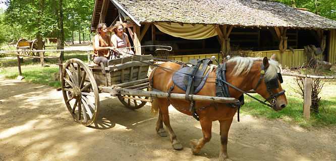 Horse cart at Guédelon Castle, Treigny, France