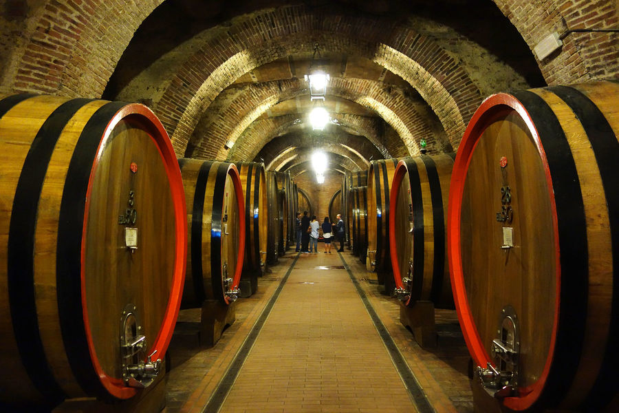 Wine cellar in Montepulciano, Italy