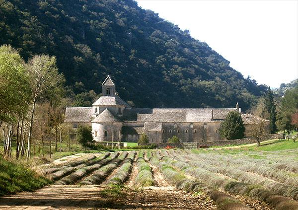 Abbey Notre-Dame de Sénanque, near Gordes, France