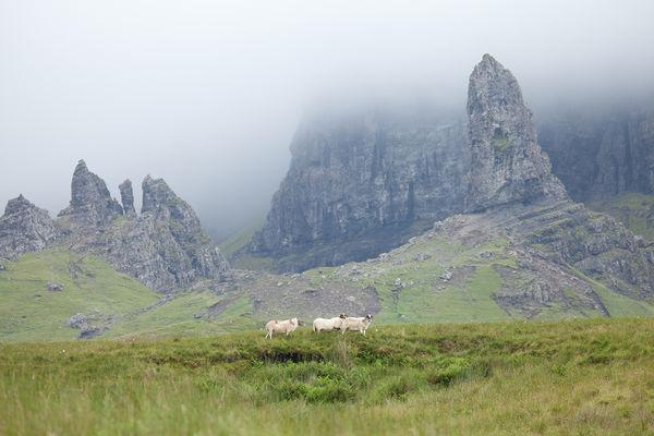 Old Man of Storr and Trotternish Ridge, Isle of Skye, Scotland