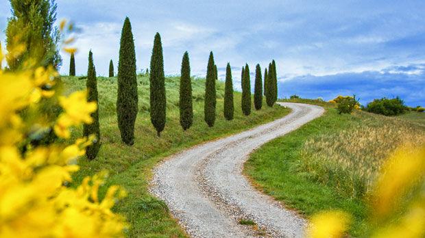 Countryside drive, Tuscany, Italy