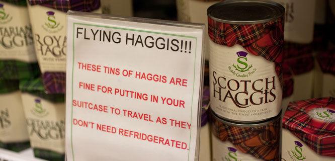Flying haggis, Edinburgh Airport, Scotland