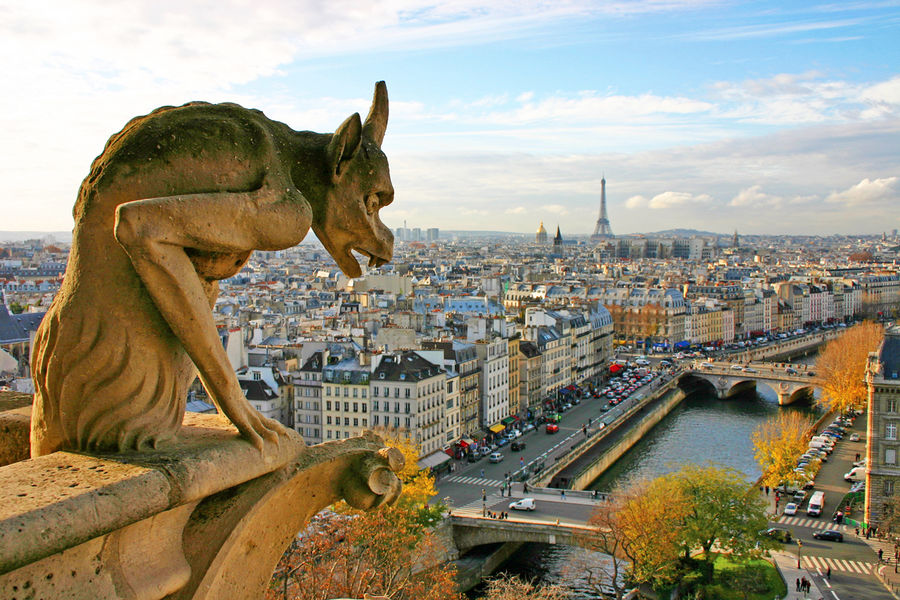 Notre-Dame gargoyle and Parisian skyline, Paris, France