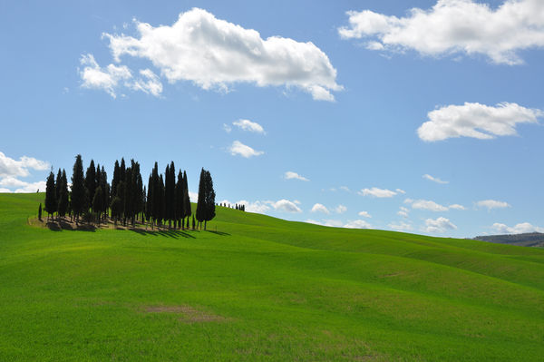Tuscan countryside, Italy