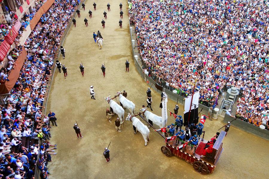 Palio-banner procession, Il Campo, Siena, Italy