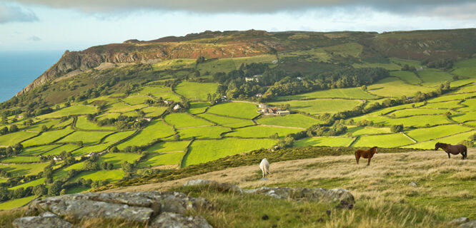 Countryside near Llanfairfechan, Wales