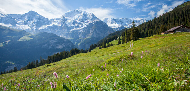 On the Grütschalp–Mürren trail, Berner Oberland, Switzerland