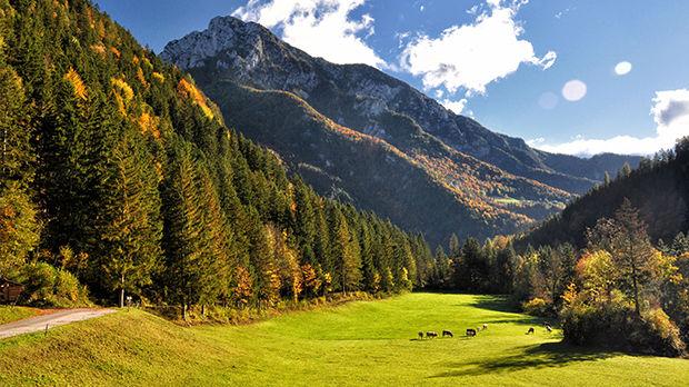 Logaraska Dolina, Kamniško-Savinjske Alps, Slovenia