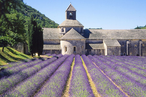 Best Time To Go To Provence And The French Riviera By Rick Steves