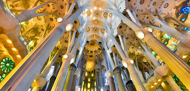 The ceiling of the Sagrada Família, Barcelona, Spain