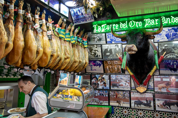 Bull bar, Madrid, Spain