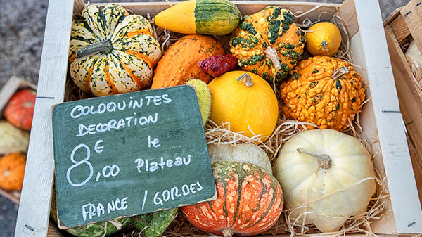 Farmer's market in Coustellet, Maubec, France