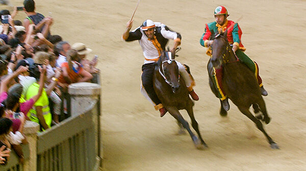 Racers in the Palio, Siena, Italy