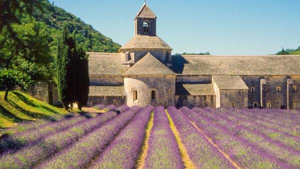 Abbey Notre-Dame de Sénanque, Luberon, France