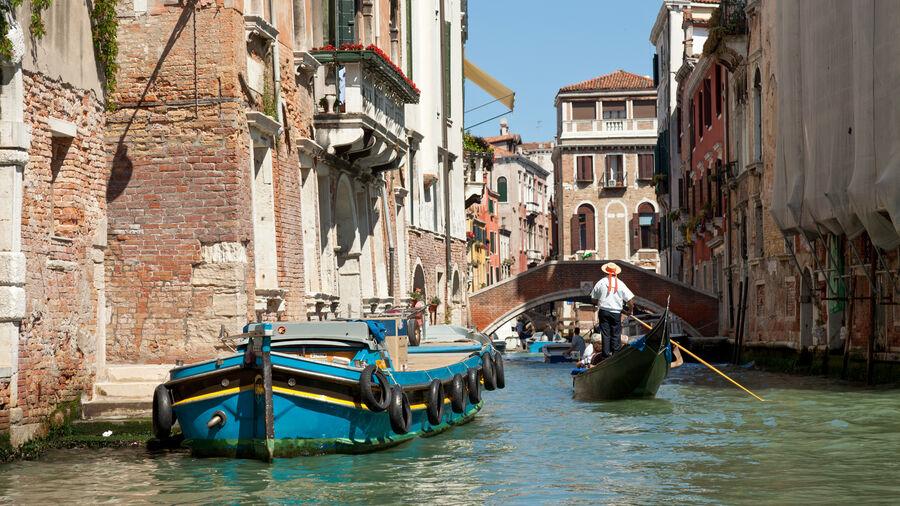 Canal boats, Venice, Italy