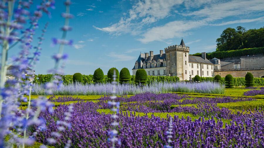 Château de Villandry, Loire